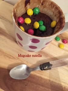 mugcake nut 2